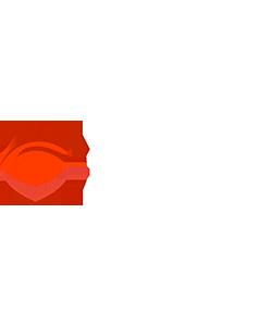 L2E-Global Forum